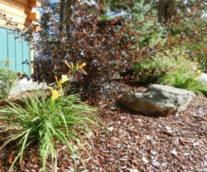 Landscaping Services, Design and Install in McCall, Id and